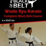 Get My Black Belt